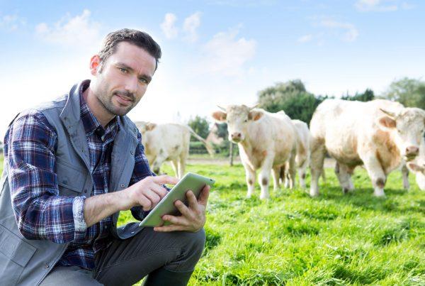 Nachhaltige Landwirtschaft Whitepaper Agritech